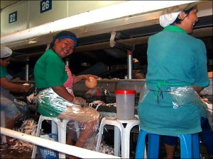 Women working in coconut oil processing plant./